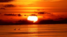 Dramatic Sunset Hd Wallpaper