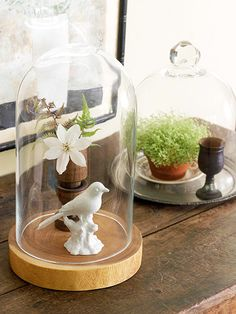 Vintage Finds:: Shop the garden shed for entryway decor. Here, small plants and simple fern clippings are covered with glass cloches to help them thrive in the dry winter months.    DIY Tip: Put little-used items such as platters and pretty cups to decorative use. A mix of materials such as terra-cotta, wood, silver, and china suggest a look that has developed over time
