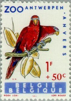 Stamp: Red Lory (Eos bornea) (Belgium) (Birds of Antwerp Zoo) Mi:BE 1277,Sn:BE…