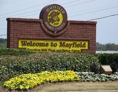 Mayfield Dairy has free tours & ice cream at their plants in Athen, TN, Birmingham, AL & Braselton, GA.