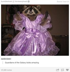 Guardians of the Galaxy looks amazing. -Repurposing unrelated posts in the name of fandom: | 33 Things You'll Only Understand If You're In Fandom