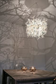 14 best forms in nature shadow chandelier images on pinterest hilden diaz forms in nature lamp aloadofball Gallery
