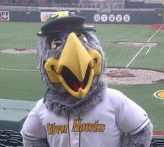 Swoop, mascot of the Silver Hawks, minor league baseball, located in South Bend IN in Coveleski Stadium