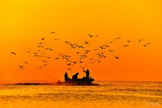 Morning of seagulls. by Ryu Jong soung on 500px