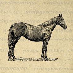 Printable Image Antique Horse Download Illustration Graphic