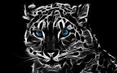 leopardo - Pesquisa Google