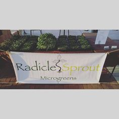 Set up and ready to go.  Come down and see us! #microgreens #buylocal by radiclesprout