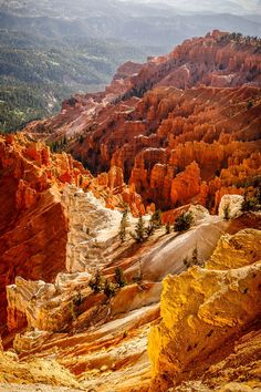 Cedar Breaks - National Monument - Utah - USA