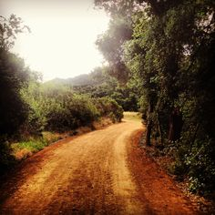 Rancho Peñasquitos trail running