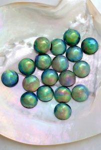 Resultado de imagen para abalone pearls