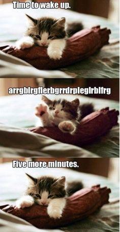 I definitely make that noise every morning when I wake up.