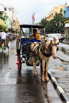 Pferdekutsche in #Yogyakarta