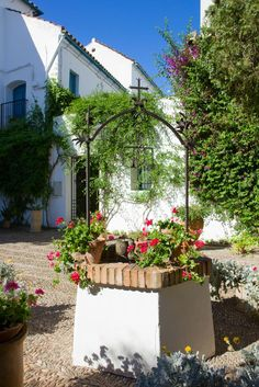 Cordoba - Palacio de Viana gardens