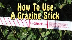 Learn to use a grazing stick.