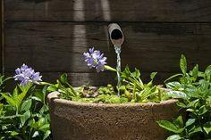 Com a instalação de uma pequena bomba, o vaso foi transformado em fonte. O projeto da paisagista Gigi Botelho tem bica de metal e painel de madeira de demolição. A flor de aguapé deixa o visual ainda mais charmoso @gigiarrudabotelho #jardim #dica #garden #landscape #paisagismo #fonte