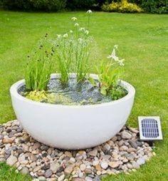 Un must-have qui sublime l'espace extérieur, le petit bassin aquatique s'invite au jardin pour émerveiller petits et grands ! Cette petite oasis de végétaux #WaterGardening