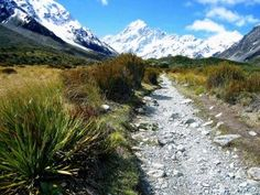 . . Aoraki Mt Cook National Park . .