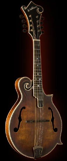 186 Best Mandolins images in 2019   Instruments, Guitar