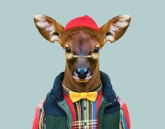 Incredibly Cute Portraits of Baby Animals Dressed Like Humans - My Modern Met