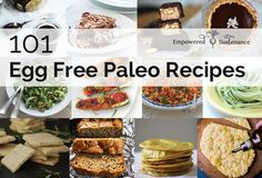 101 egg free paleo recipes.  Potentially AIP recipes...have to look more in depth