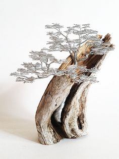 Driftwood Sculpture / Driftwood Art / Driftwood Bonsai / Wire