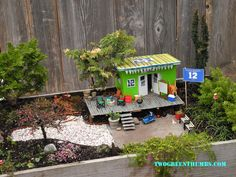 Miniature Garden with 12th Man Seahawks fever!