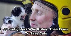 Click to see what a fabulous job these amazing people do.-- this story is so awww inspiring sweet, a must read for every cat lover.