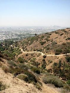 Runyan Canyon Loop Hike Photos - LocalHikes