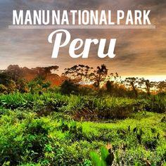 Explore the Peruvian Amazon at Manu National Park.
