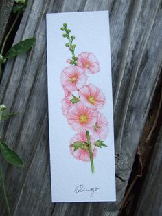 Pink Hollyhocks - hand-painted watercolor bookmark (original painting) by RINGOhandpainter on Etsy- Material: watercolor paper (260g) Size: 12 x 4 cm - Still life flower paintings, floral artwork, plant/flower illustration, it's a small painting, can be framed as deco on desk or wall. Facebook: https://www.facebook.com/ringo.handpainter