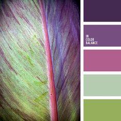 бледно-фиолетовый, дизайнерские палитры, зеленый, зеленый и фиолетовый, нефритовый цвет, оттенки зеленого, оттенки зеленого и фиолетового, оттенки сине-фиолетового, оттенки фиолетового, салатовый.