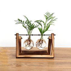 Ivolador Desktop Glass Planter Bulb Vase with Retro Solid Wooden Stand and Metal Swivel Holder for Hydroponics Plants via Amazon.com