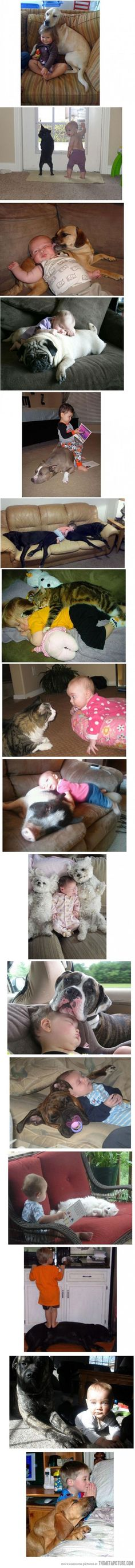 pets and their humans.so cute! I hope I have cute babies and cuddly animals for them one day! Love My Dog, Puppy Love, Animals For Kids, Baby Animals, Funny Animals, Cute Animals, Animal Pictures, Cute Pictures, Chien Golden Retriever