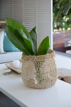 If you like a little style mixed in with your sea and sand on a beach holiday, Zinkwazi Laguna is for you. Kwazulu Natal, Beach Holiday, Rental Property, Pools, South Africa, Planter Pots, Vacation, Beautiful, Home Decor