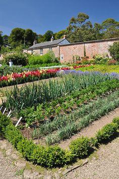 Walled vegetable garden.