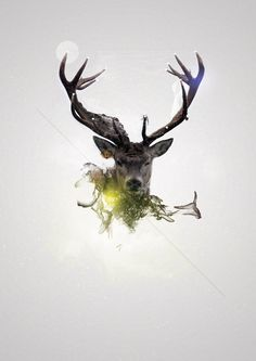 #hipster #geometric #splash #deer