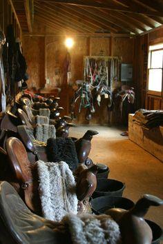 . saddle up