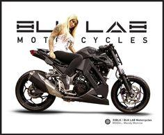 300 ninja motorcycle conversion brasse kit - Google Search