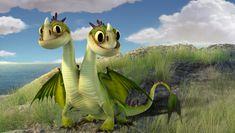 Baby Zippleback | Explore | How To Train Your Dragon - ADORABLE