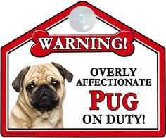 Pug dog / mops gift - window / car #suction sign - #novelty #warning sign,  View more on the LINK: http://www.zeppy.io/product/gb/2/162223792367/
