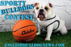 """Fromm Family Foods """"Sporty Bulldog"""" Contest"""