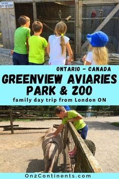 Great day trips around London, Ontario - Family trip to Greenview Aviaries Park & ZOO in south-western Ontario. All you need to know before you visit. #greenviewzoo #greenviewaviariesparkandzoo #ontario #familytrips #roadtrip #thingstodowithkids #londonontario #on2continents