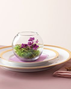 Glass Garden. So cute.