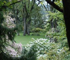 location: Elk Rock Garden North Lawn from Magnolia Walk