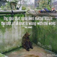 I love bears I hate zoos and this is my favourite quote so this heartbreaking meme is perfect as it depicts everything that is wrong with this world. Animals are not inferior to us. They are our equals as we are animals too. They are here with us not for us. In fact they were here BEFORE us so we are THEIR guests on this planet not the other way around. Bears for example have been around for millions of years humans merely thousands of years so who are we to deprive them of their Earth for…