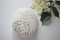 paula valentim / otchipotchi. Image of herbarium stone · sambucus