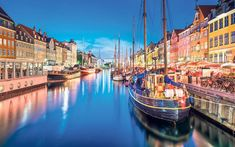 As a new book reveals the secrets of the world's happiest country, Judith   Woods plans a year of living Danishly - from box sets to flat-pack   furniture, scheduled sex and cinnamon buns