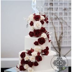 3 tier White wedding cake adorned with Burgundy and white sugar roses Sugar Rose, How To Make Cake, Cake Designs, Wedding Cakes, Burgundy, Roses, Cake Templates, Wedding Gown Cakes, Pink