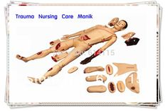 1208.00$  Watch now - http://aliqsl.shopchina.info/go.php?t=791888093 - Factory direct sale Trauma Nursing Care the Manikin head manikin Teaching AIDS Anatomy model packing size:79*44*59cm 1set/lot 1208.00$ #shopstyle