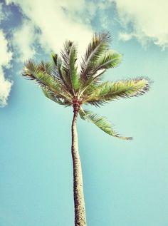 Aloha Sunday.